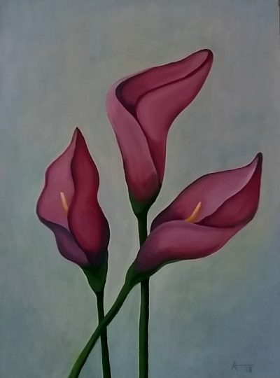 Mexican lilies 2